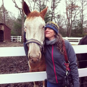 Instagram Horse Rescue Volunteering